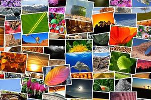 Bild: Simon (pixabay.com)